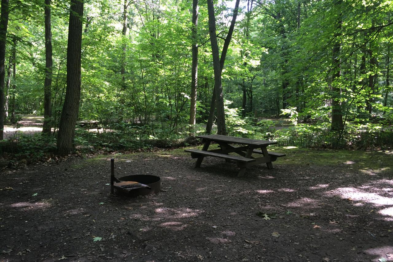 De L Anse 34 Camping Parc National D Oka S 233 Paq