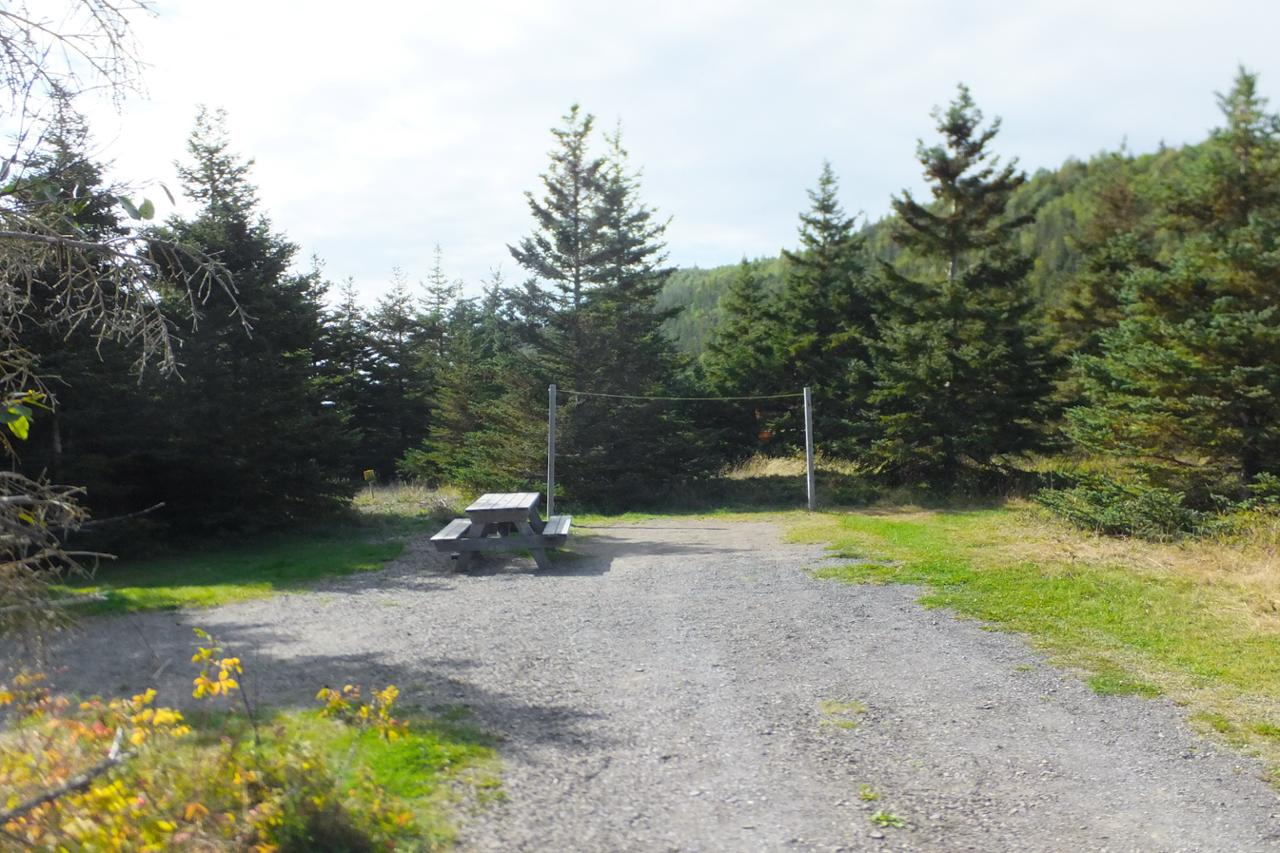 Rioux 40 camping parc national du bic s paq for Camping bic