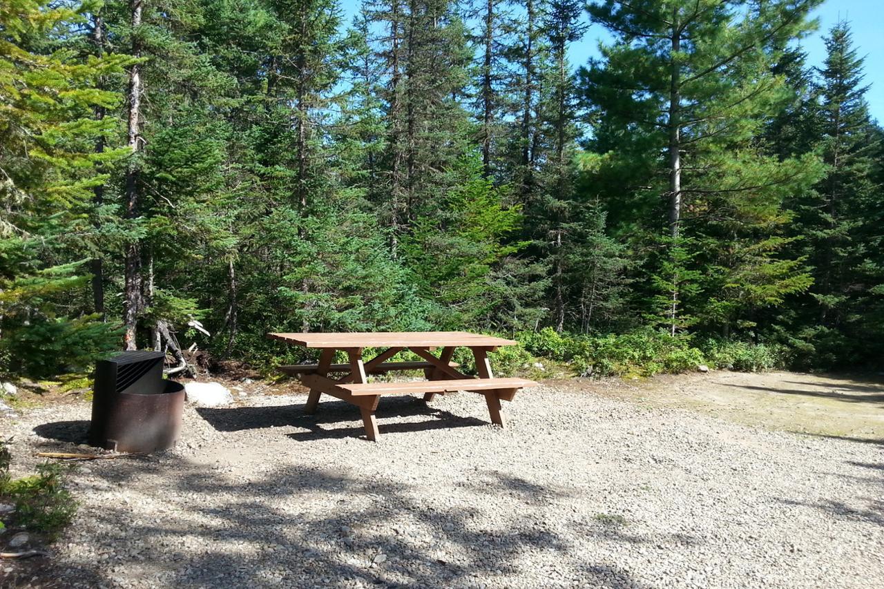 L 39 aigle royal 104 camping parc national des hautes for Camping de la piscine aigle