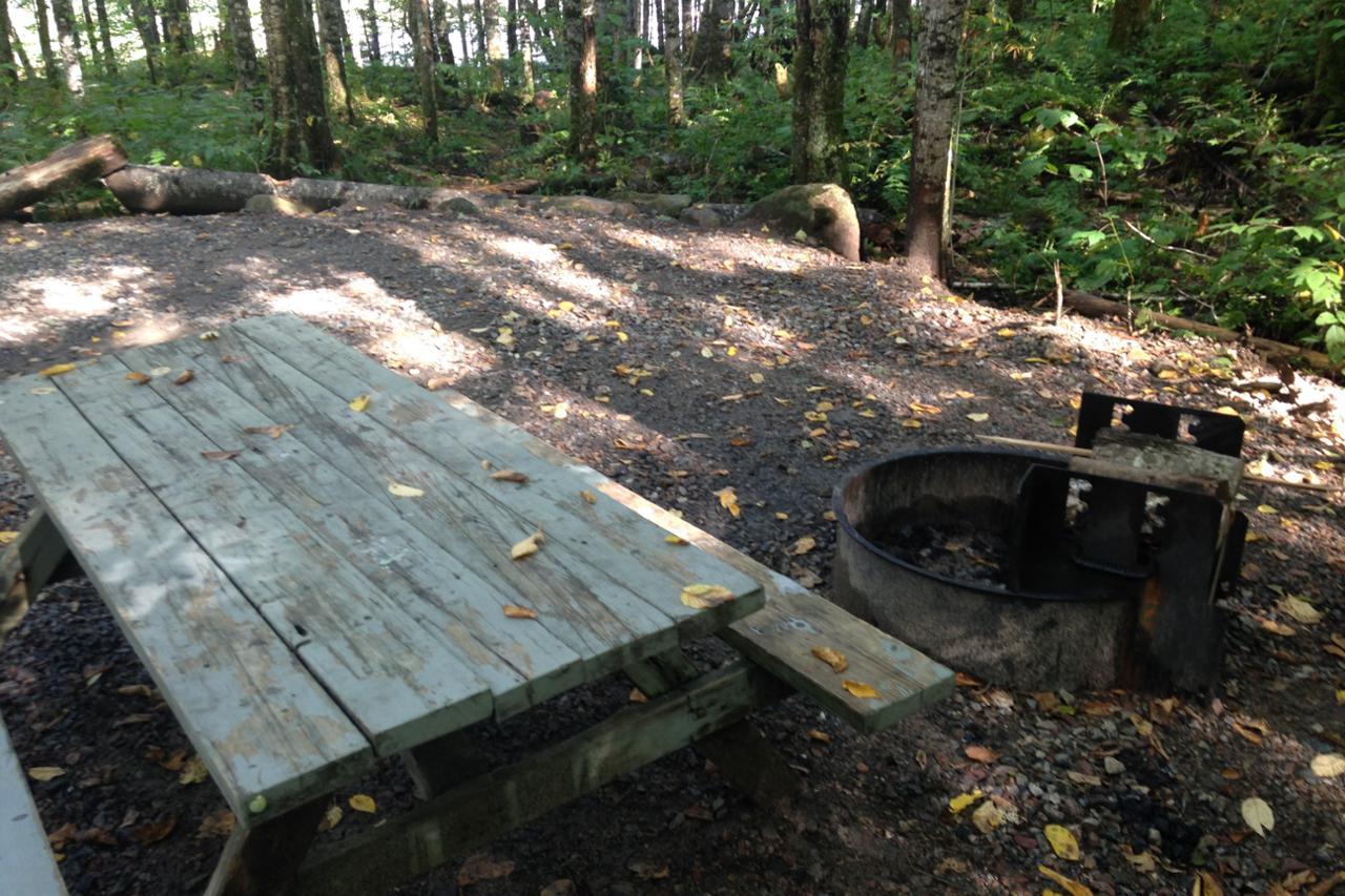 Le H 233 Ron 3 Rustic Campsite Parc National De La Jacques