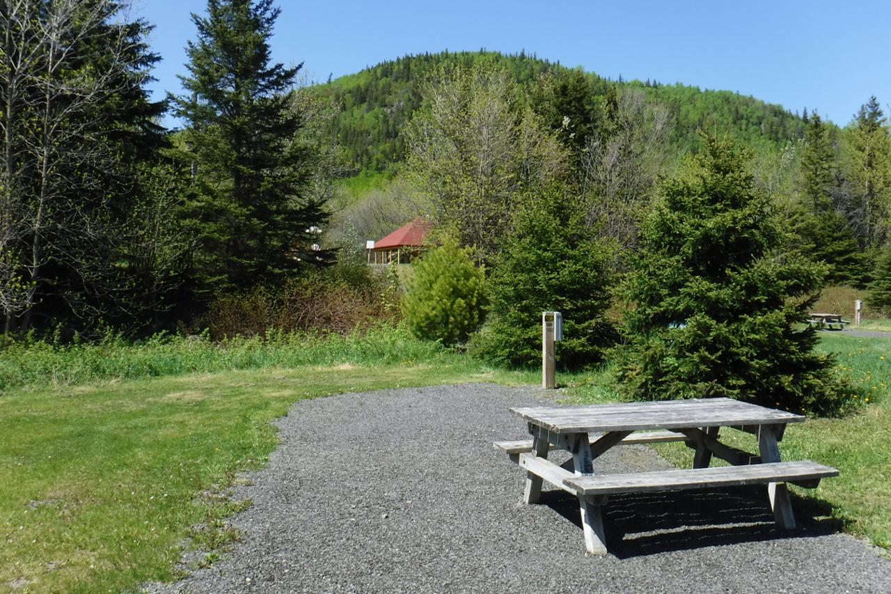 Cormoran 108 camping parc national du bic s paq for Camping bic
