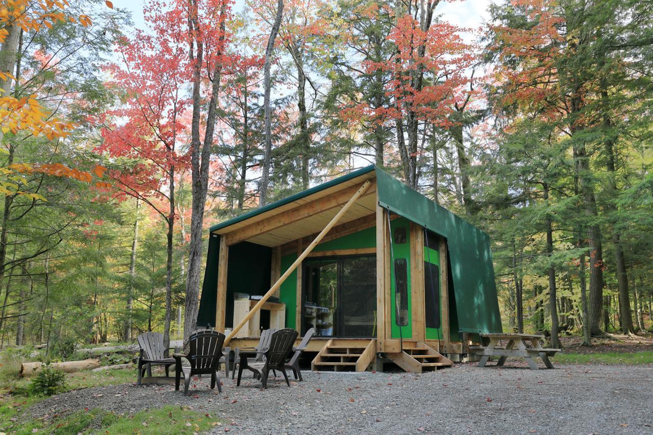 Ours 58 Camping Parc National Du Mont Tremblant S 233 Paq
